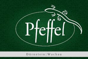 Thermengutschein Gartenhotel Pfeffel**** GmbH online kauufen
